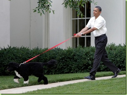 dog-walks-man_obama