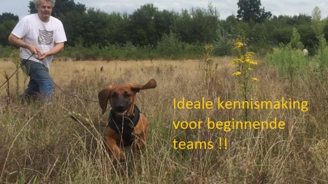 ideale kennismaking voor beginennde teams
